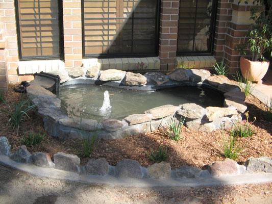 Living edge landscapes of sydney australia gardens and for Garden features australia